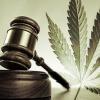 El nuevo camino hacia la política de drogas: la despenalización de la marihuana