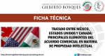 Ficha Técnica Nº3. Tratado entre México, Estados Unidos y Canadá: principales elementos del acuerdo comercial en materia de propiedad intelectual