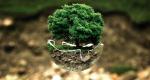 Preservación del Medio Ambiente: Implicaciones, Normativa y Experiencias Internacionales
